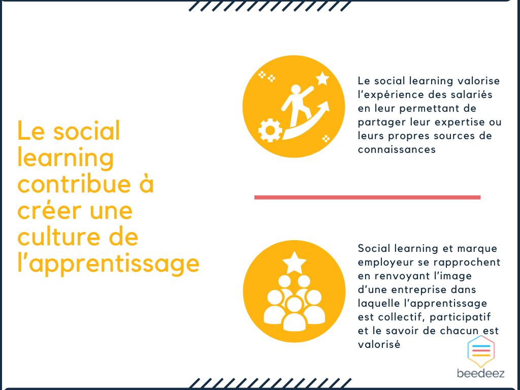 Le social learning contribue à créer une culture de l'apprentissage